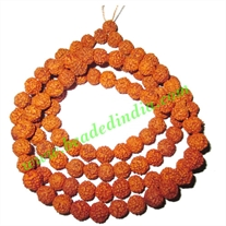 Rudraksha Beads String (mala) 5 Mukhi (five face), size: 6mm