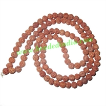 Free Shipping Rudraksha Beads (pack of 9 strings), 5 Mukhi (five face), size: 6mm