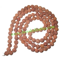 Free Shipping Rudraksha Beads (pack of 9 strings), 5 Mukhi (five face), size: 7mm