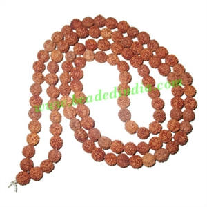 Free Shipping Rudraksha Beads (pack of 9 strings), 5 Mukhi (five face), size: 8mm
