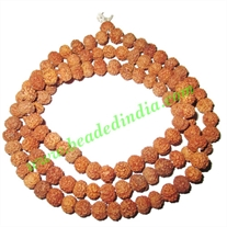 Rudraksha Beads String (mala) 6 Mukhi (six face), size: 5mm