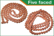 rudraksha five faced (5 mukhi) beads mala