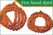 rudraksha five faced (5 mukhi) dyed beads mala