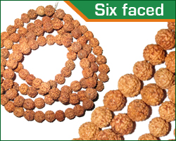 rudraksha six faced (6 mukhi) beads mala
