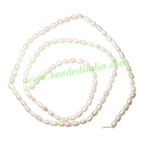 Fresh Water Pearl String, approx 100 pearls of size 2x5mm in a string